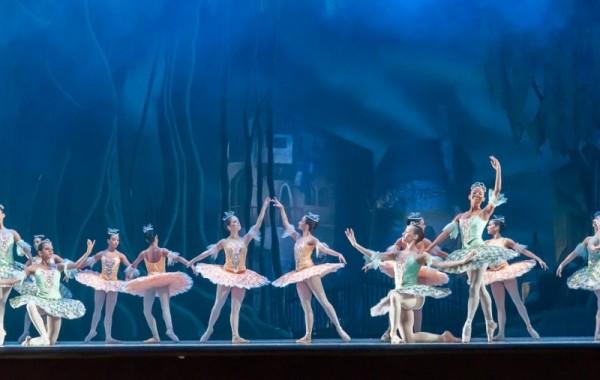 ballet-545323_960_720.jpg